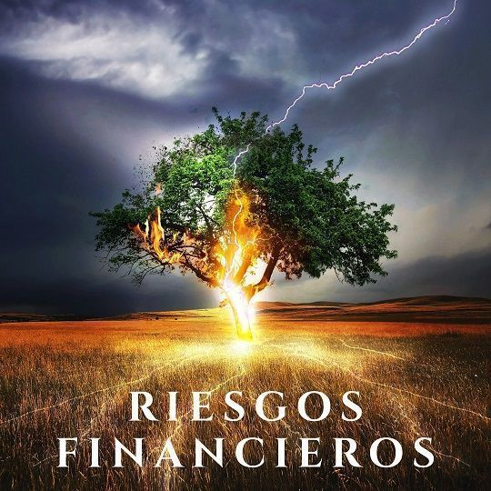 Riesgos Financieros, Clases y Ejemplos